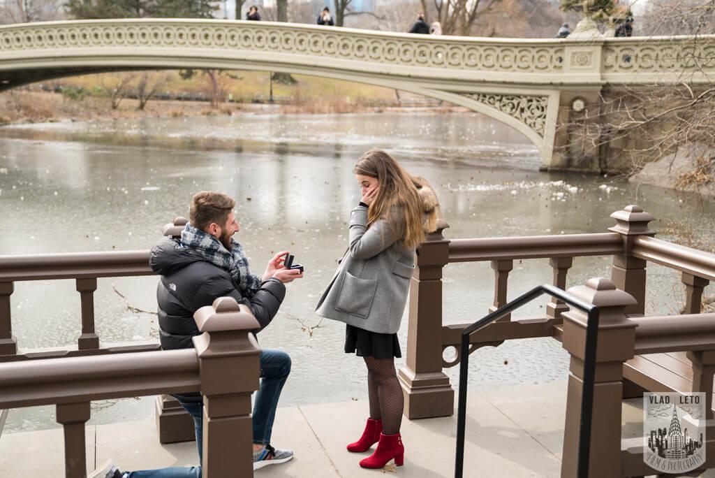 Photo 5 Central Park proposal by Bow Bridge. | VladLeto