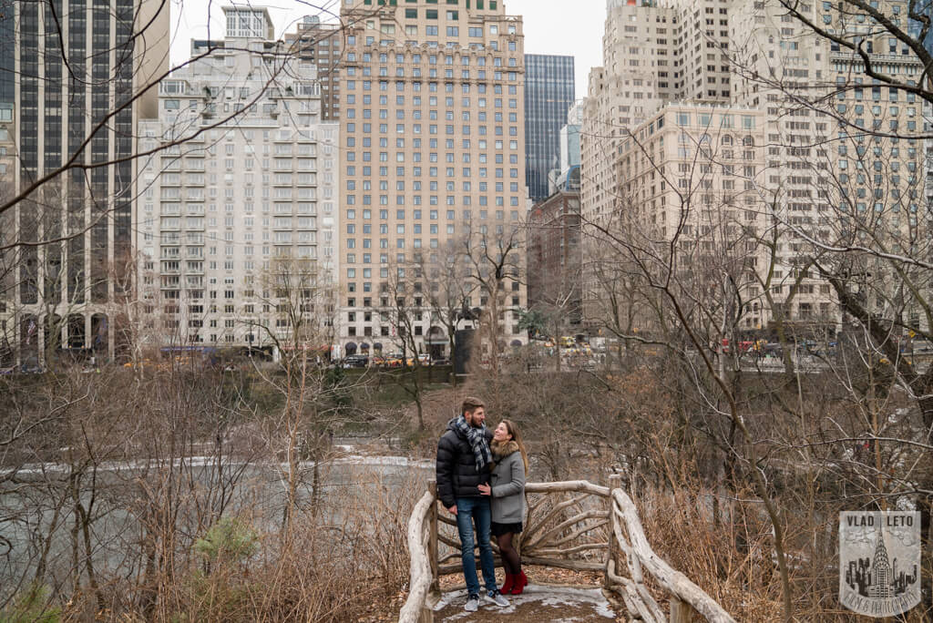 Photo 21 Central Park proposal by Bow Bridge. | VladLeto