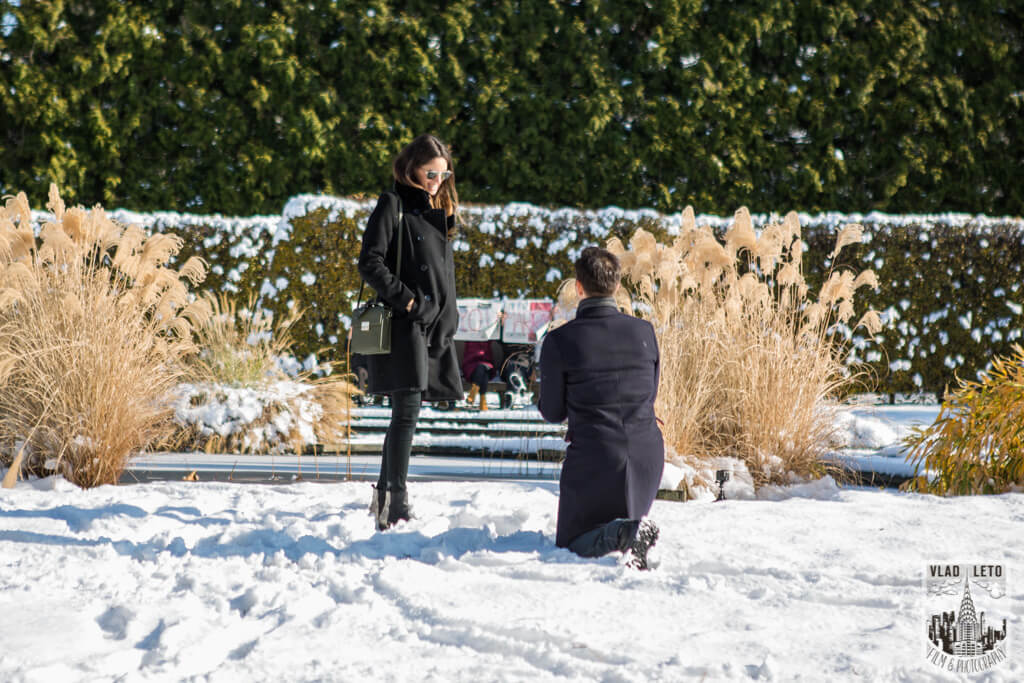 Photo Wave Hill Surprise Proposal (photo+video) | VladLeto