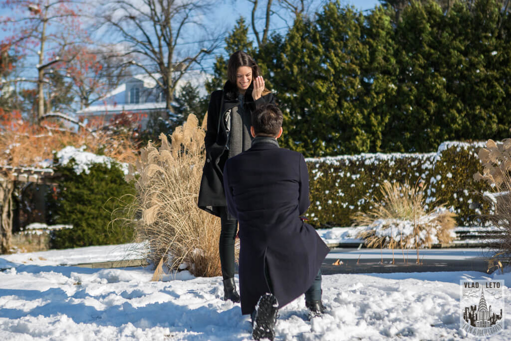 Photo 7 Wave Hill Surprise Proposal (photo+video) | VladLeto