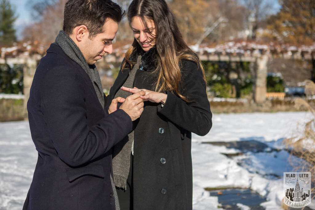 Photo 17 Wave Hill Surprise Proposal (photo+video) | VladLeto