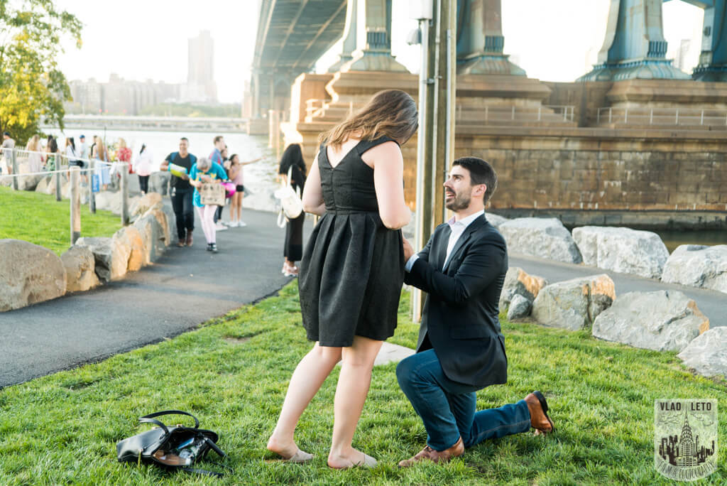 dumbo wedding proposal