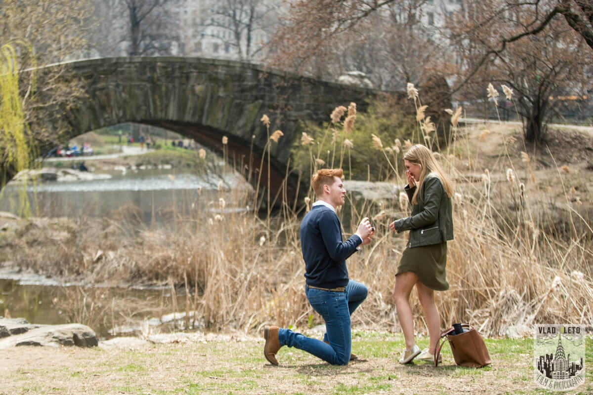 Photo Central Park Surprise Proposal under Gapstow bridge. | VladLeto