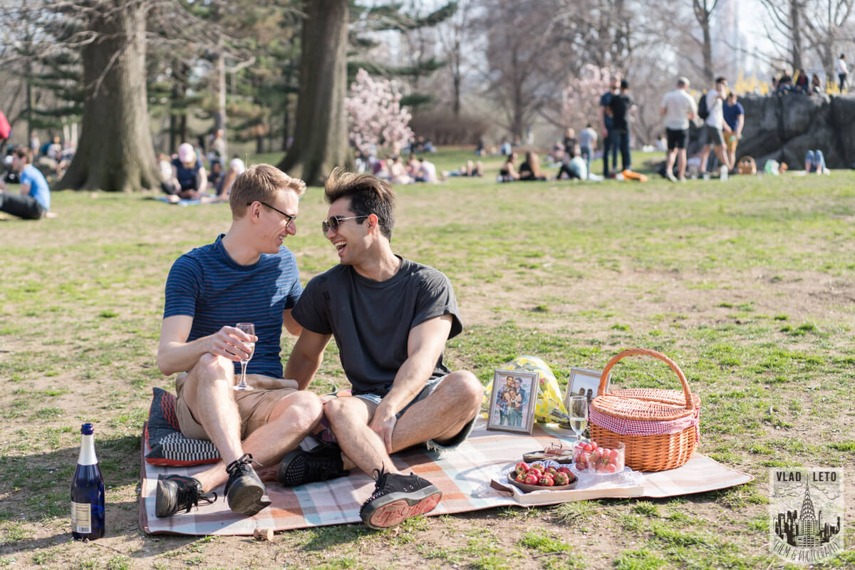 Photo 3 Central Park Romantic Picnic Proposal | VladLeto
