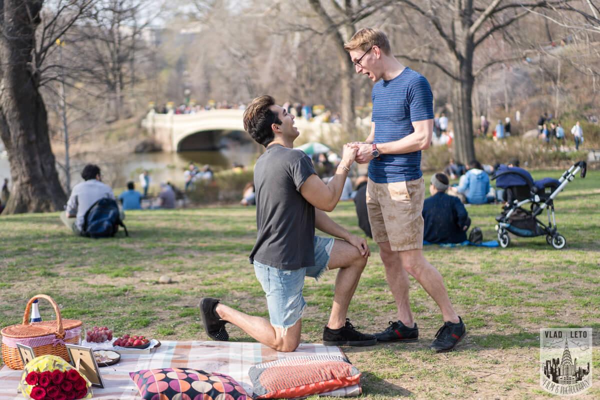 Photo 4 Central Park Romantic Picnic Proposal | VladLeto
