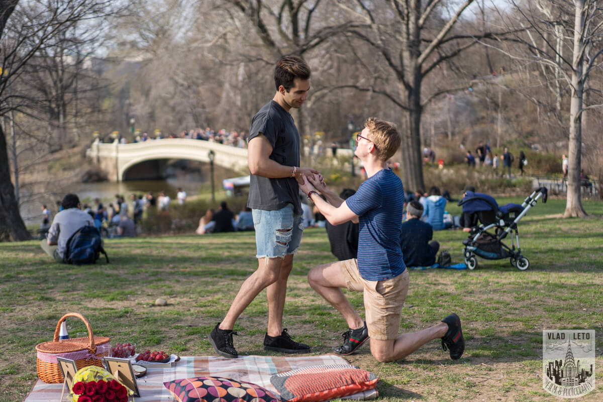 Picnic Proposal in Central Park Romantic