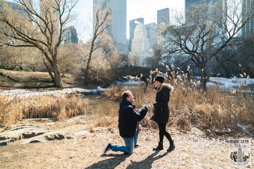Photo 2 Surprise Proposal by Gapstow Bridge, Central Park | VladLeto