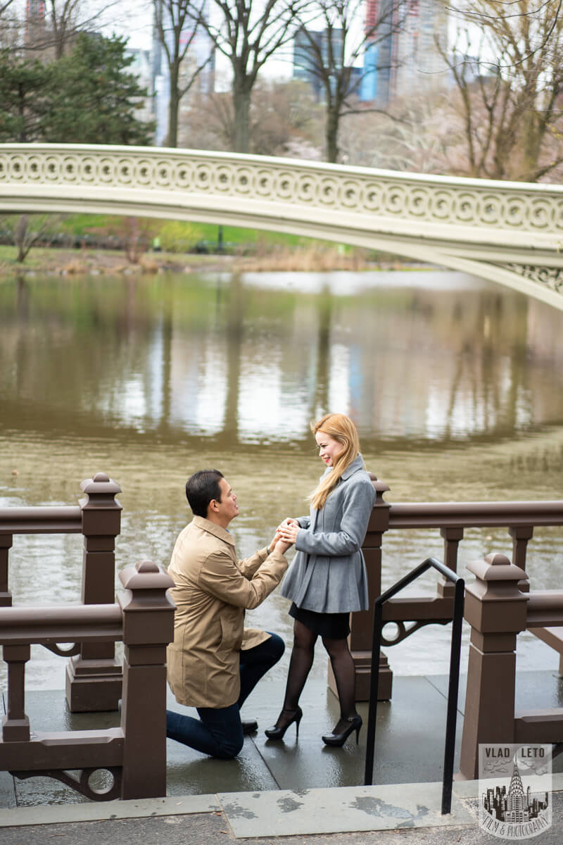 Proposing in central park
