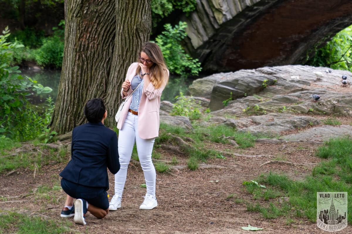 Photo Same Sex Proposal in Central Parks   VladLeto
