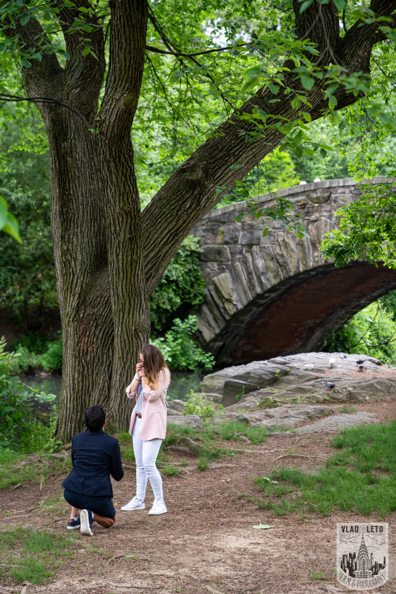 Same Sex Proposal in Central Parks