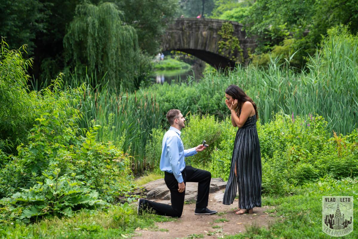 Photo Central Park Surprise proposal by Gapstaw Bridge. | VladLeto