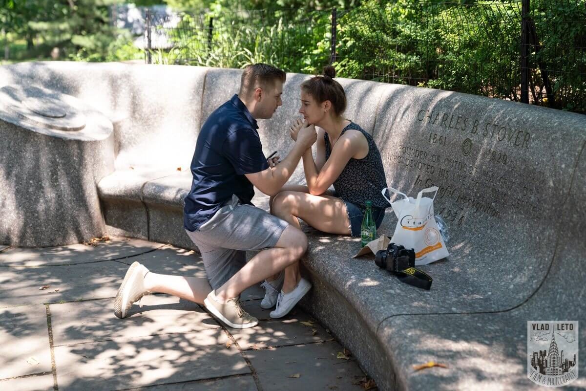Photo Shakespeare Garden Proposal in Central Park 2   VladLeto
