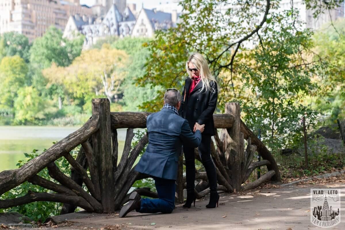Photo Central Park Proposal 3 | VladLeto