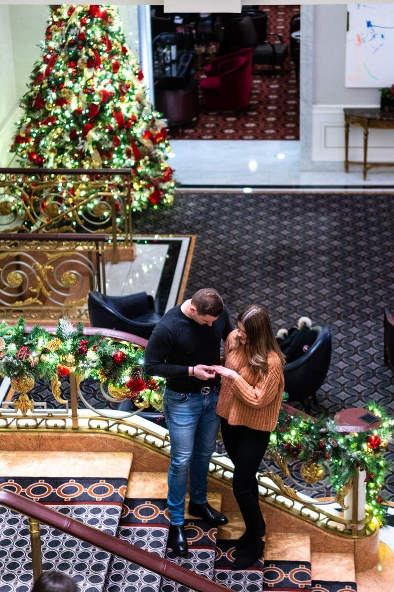 Lotte Palace Christmas Tree Proposal | VladLeto