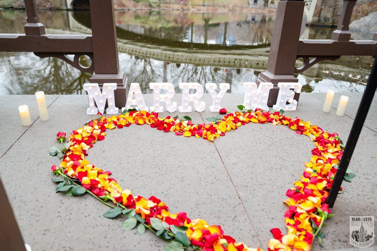 Photo 3 Central Park Marriage Proposal by Bow Bridge. | VladLeto
