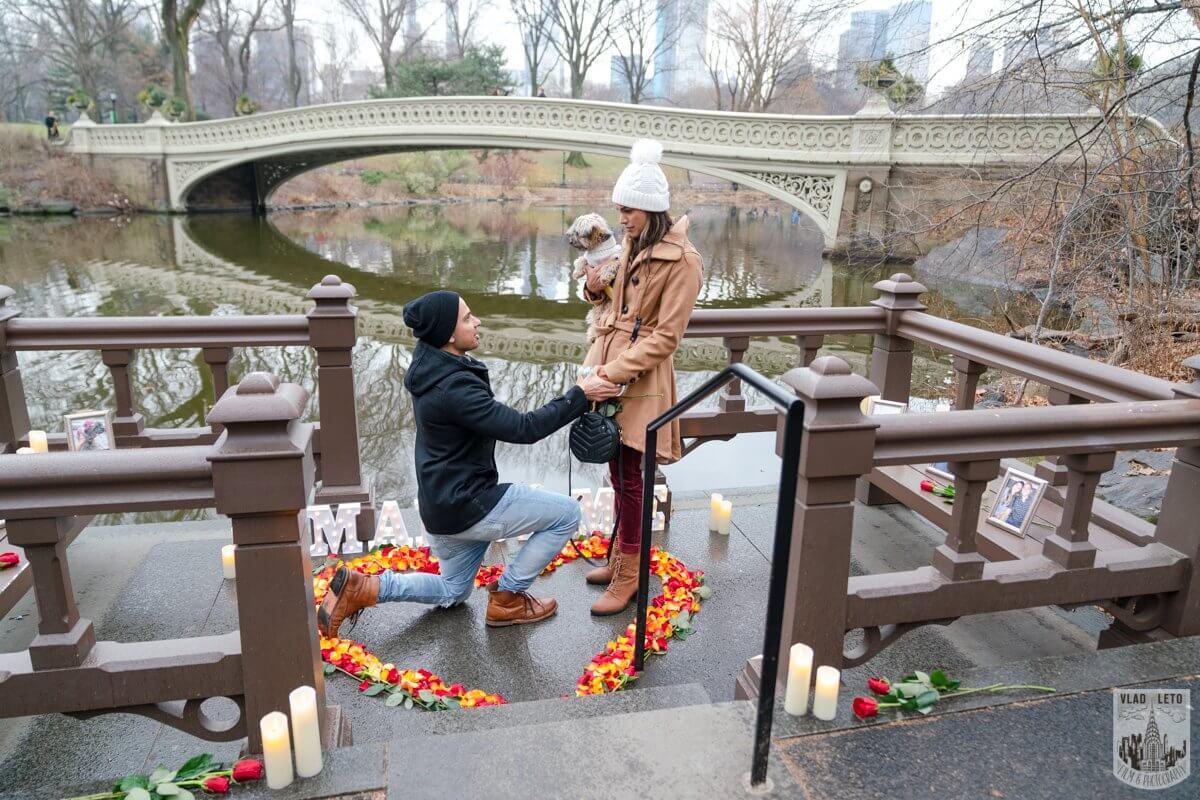 Photo 4 Central Park Marriage Proposal by Bow Bridge.   VladLeto