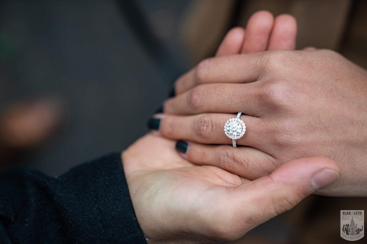 Photo 11 Central Park Marriage Proposal by Bow Bridge. | VladLeto