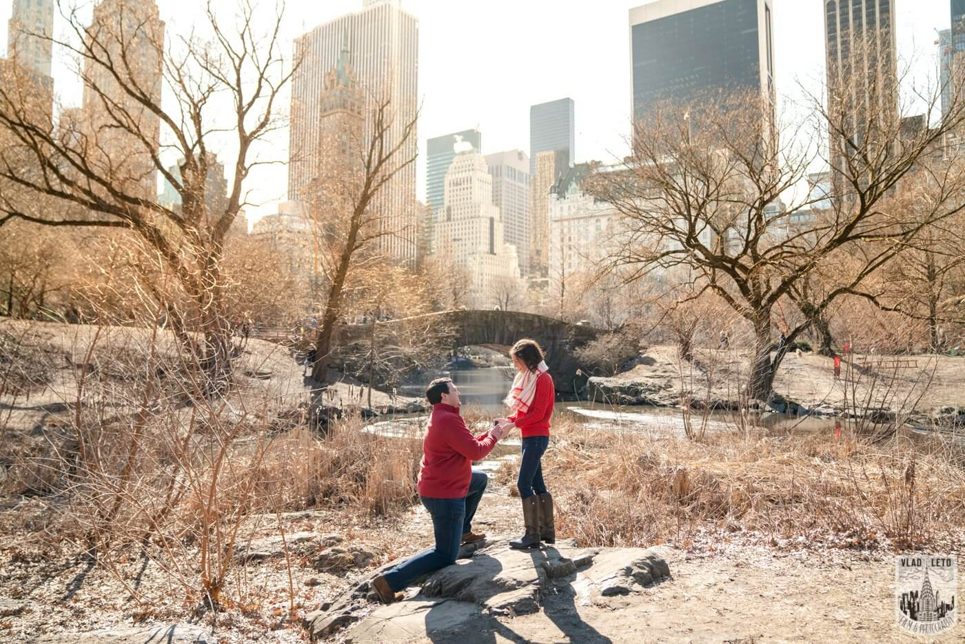 Photo Gapstow bridge Marriage proposal in Central Park | VladLeto