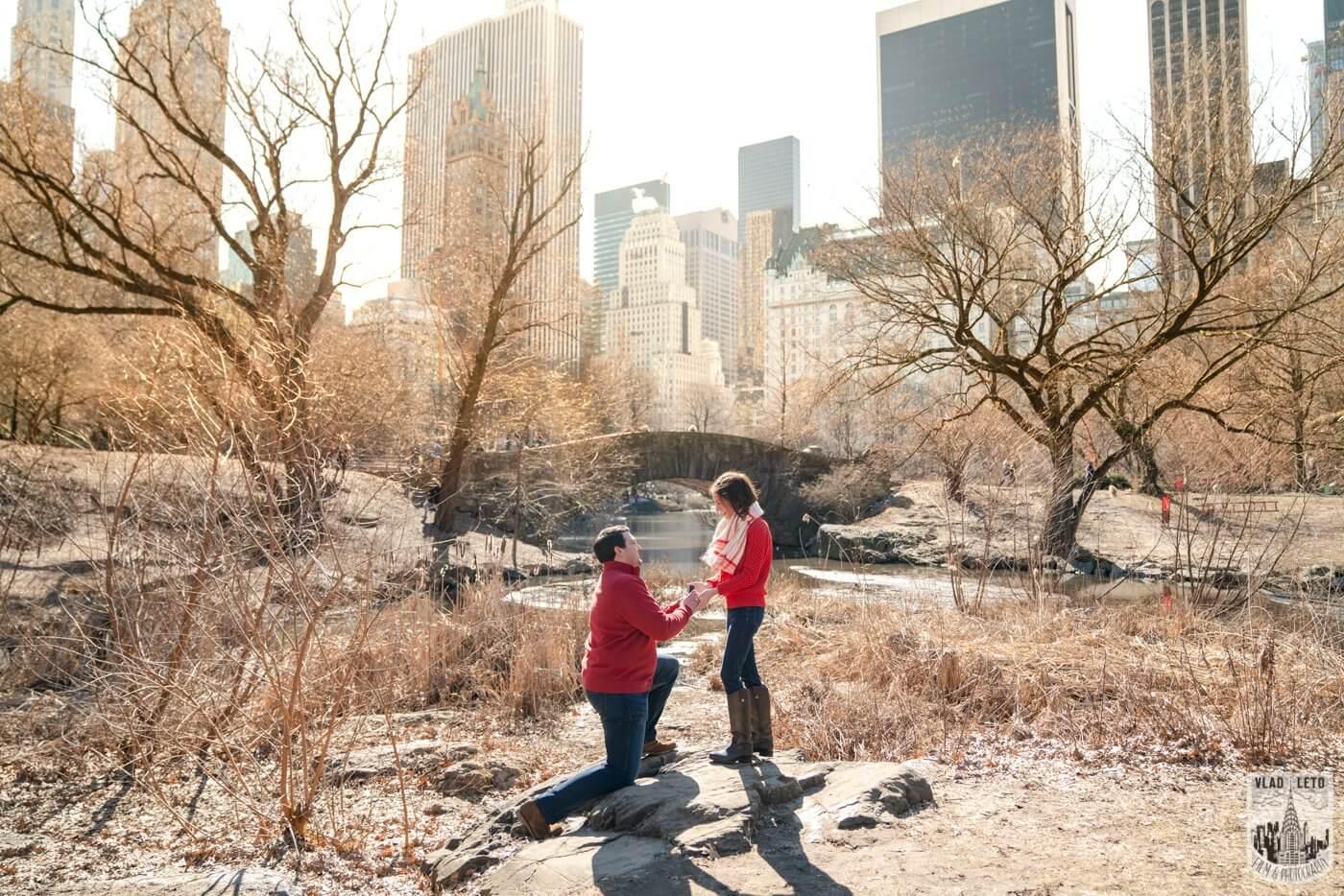 Photo Gapstow bridge Marriage proposal in Central Park   VladLeto