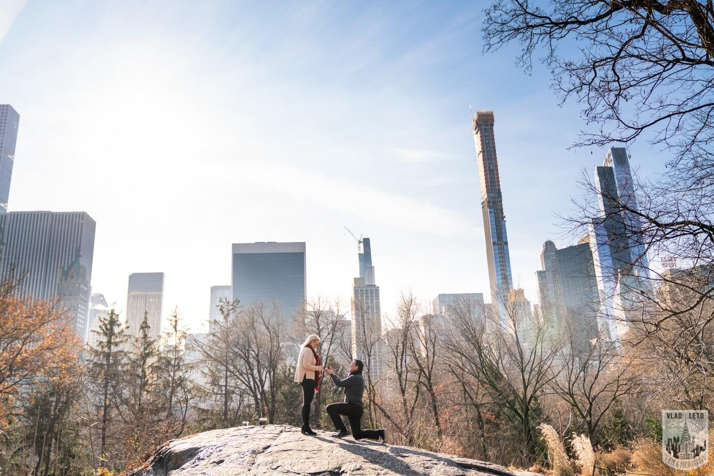 Photo Central Park Wedding proposal | VladLeto