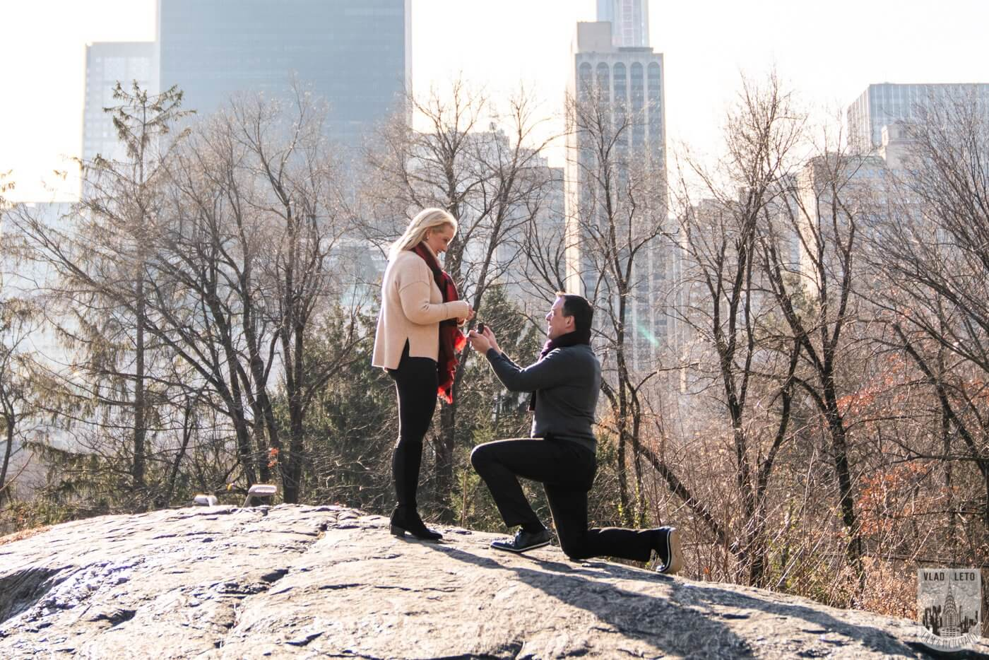 Photo 3 Central Park Wedding proposal | VladLeto