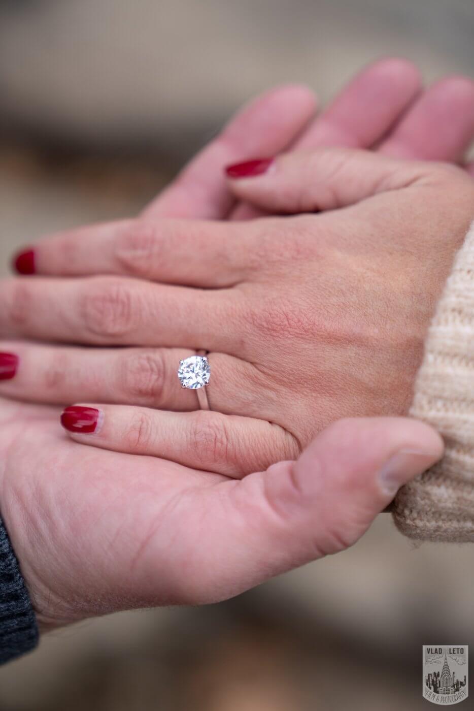 Photo 11 Central Park Wedding proposal | VladLeto