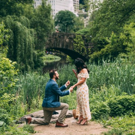 Best Proposal spots in Central Park, Gapstaw bridge