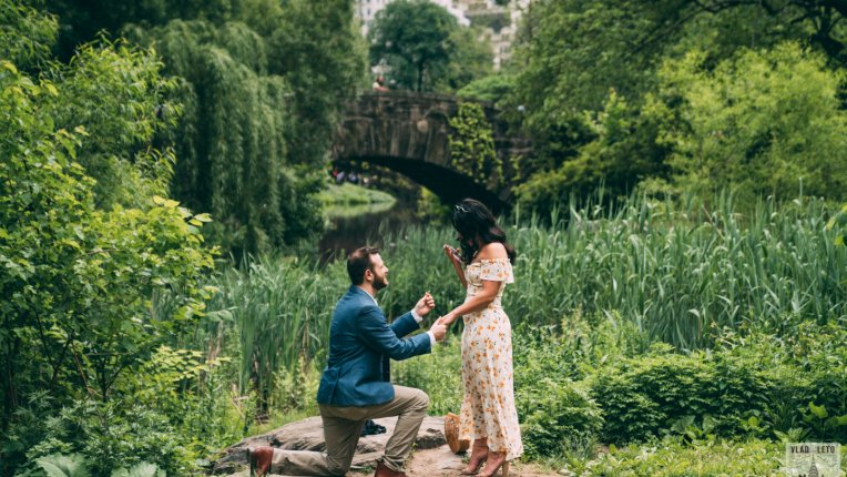 Best Proposal spots in Central Park, Gapstaw bridge