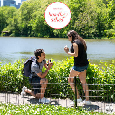 Zoom Marriage Proposal in Central Park.